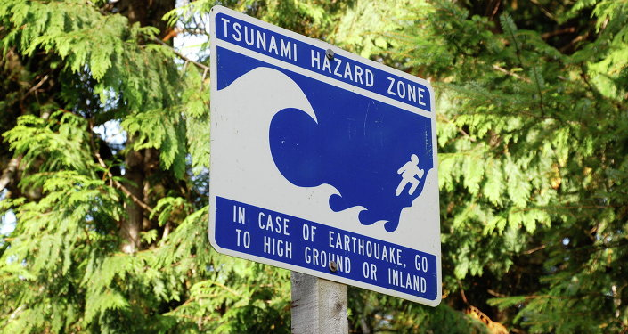 A tsunami hitting the US Pacific Northwest potentially puts 100,000 people living along the coast at risk, and 23% of coastal communities won't find high ground in time, according to a new study.