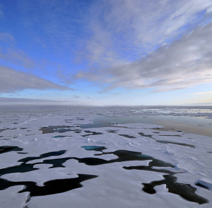 US Arctic Council chairmanship to focus on climate change, energy access