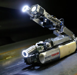 The scorpion-robot developed by Toshiba Corp. is demonstrated at its laboratory in Yokohama, near Tokyo, Tuesday, June 30, 2015.