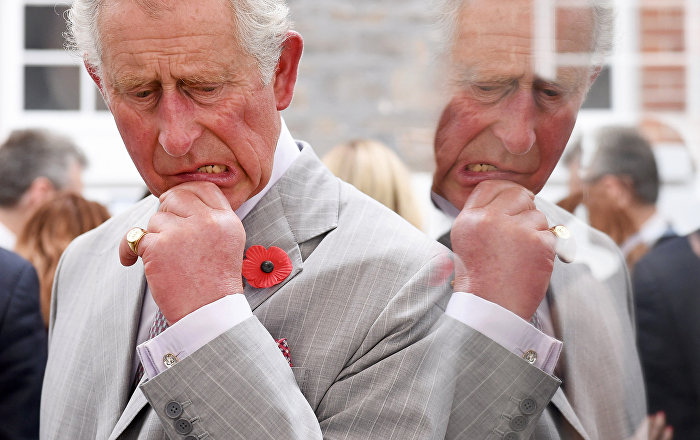 prince charles essay Prince charles' paradise papers revelations are leading to ethics accusations after the documents allegedly • us • one news page: wednesday, 8 november 2017.