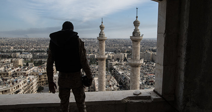 A soldier of the Syrian Arab Army is seen here in Aleppo