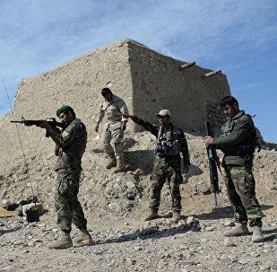 Afghan security forces.