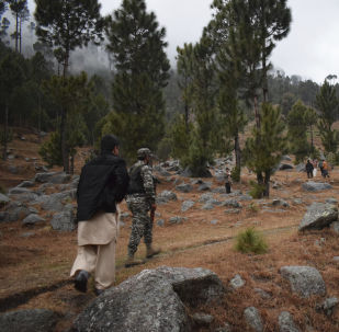 Pakistani reporters and troops visit the site of an Indian airstrike in Jaba, near Balakot, Pakistan, 26 February 2019
