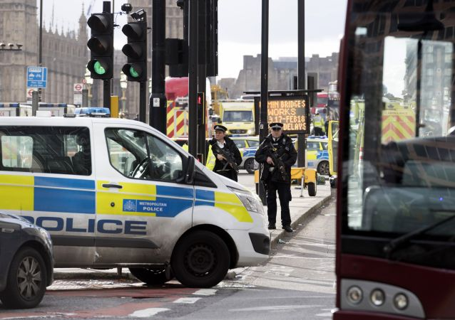 Police officers cordon off the territory near the UK Parliament in London where an assailant attacked a police officer and pedestrians.