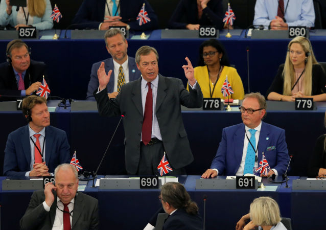 Brexit Party leader Nigel Farage speaks during a debate on the election of designated European Commission President Ursula von der Leyen at the European Parliament in Strasbourg, France, July 16, 2019