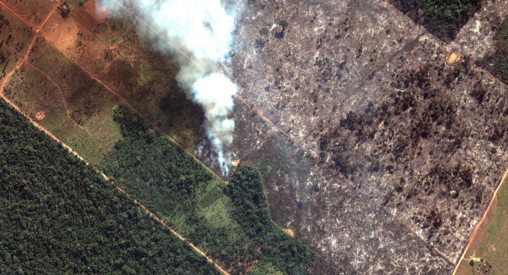 A satellite image shows smoke rising from Amazon rainforest fires in the State of Rondonia, just southwest of Porto Velho, Brazil in the upper Amazon River basin on August 15, 2019