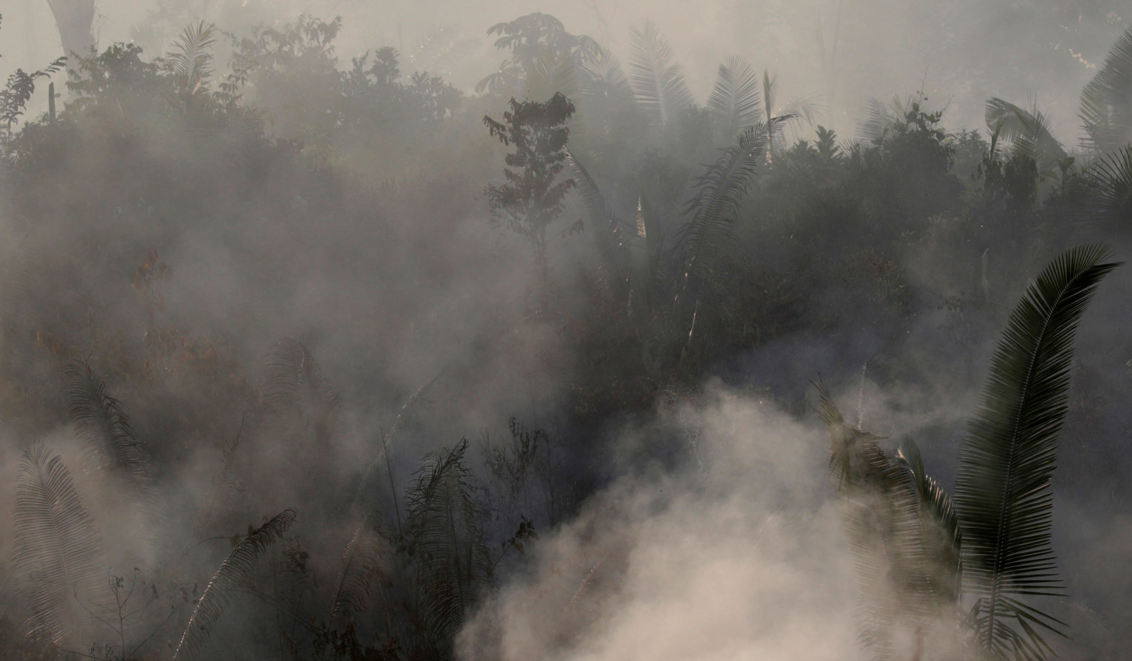 Smoke billows during a fire in an area of the Amazon rainforest near Humaita, Amazonas State, Brazil, Brazil August 14, 2019.