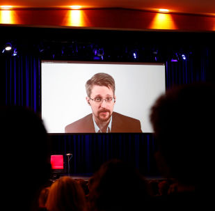 Edward Snowden speaks via video link as he takes part in a discussion about his book Permanent Record with German journalist Holger Stark in Berlin