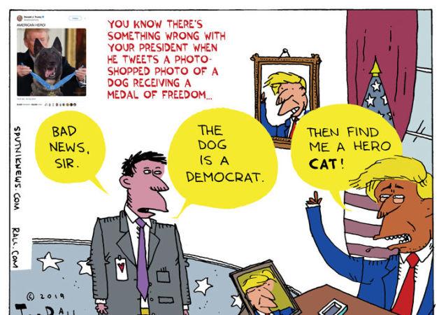 Doggone Photoshopped Shame