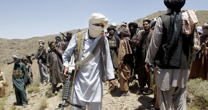 Moscow Is Sure Biden Administration Cannot Find Any 'Link' Between Russia, Taliban
