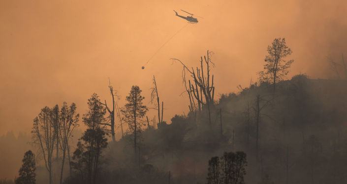 Valley Fire Spreads Over 1,500 Acres in California's San Diego County