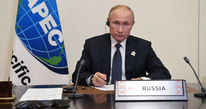 Putin Says Russia Has 'Significant Experience' in COVID Fight, Ready to Share With APEC Countries