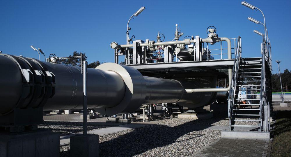 Merkel Says Transatlantic Partners Share No Common Assessment on Nord Stream 2