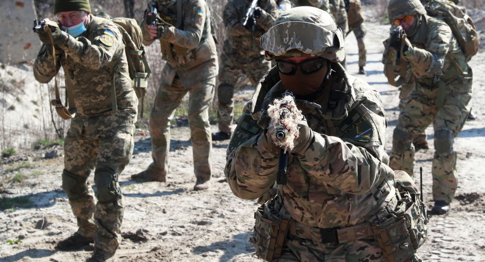 Ukraine to Direct $150Mln of US Military Aid to Boosting Combat Capabilities