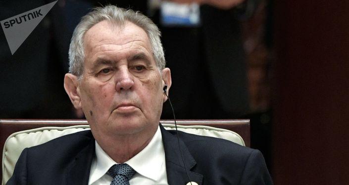 Czech Senate Committee Deems President Zeman Incapable of Holding Office