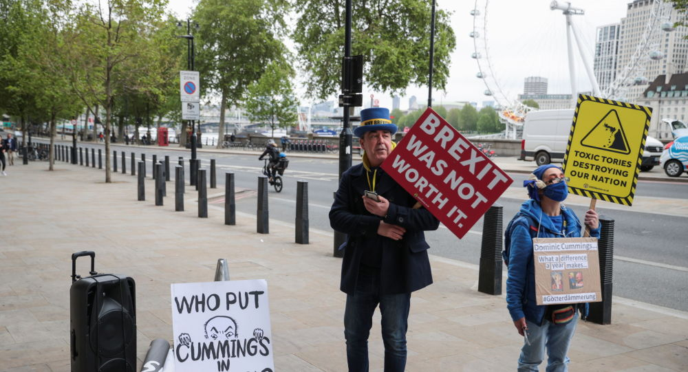 British Pro-EU Campaign Leader Admits to 'Cack-Handed' Fear-Mongering