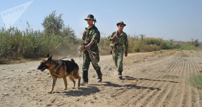 Tajikistan's Border Guard on High Alert Amid Crisis in Afghanistan's Kunduz, Official Says