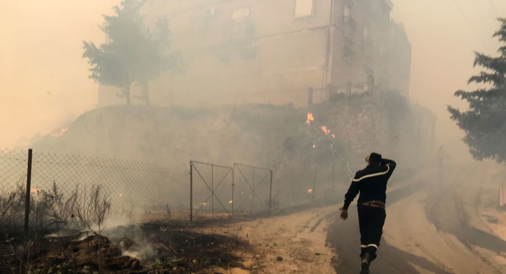 Eighteen Algerian Soldiers Reportedly Die Fighting Wildfires in Mountains