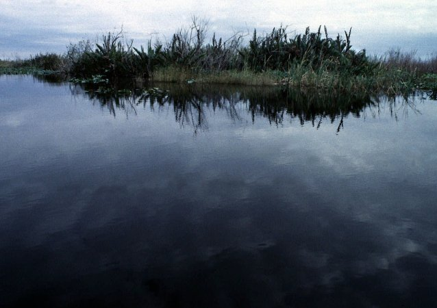 The sky reflects on the north-east boundary of the Evergaldes National Park, near Miami, on Monday, July 27, 1998. A $7.5 billion, 20-year project, referred to as the Central and Southern Florida Project Restudy, has been developed by a multi-agency committee of people and organizations interested in restoring the Everglades.