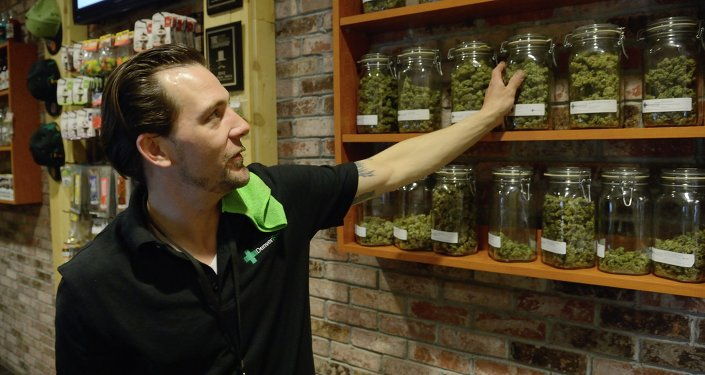 An employee at the medical marijuana dispensary Denver Relief explains the array of cannabis strains on sale.