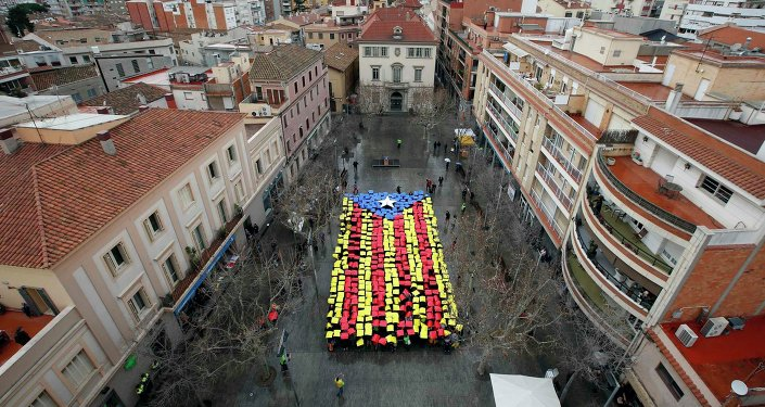 People hold placards to form a giant Estelada, the Catalan separatist flag, in front of the Sant Feliu del Llobregat townhall, near Barcelona February 16, 2014