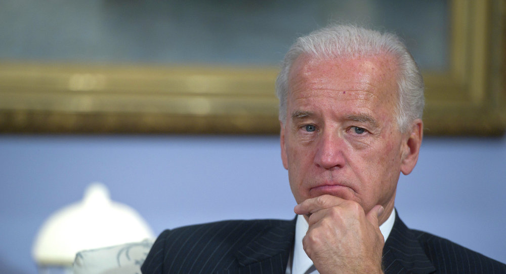 During his visit to Belgium and Germany this week, US Vice President Joe Biden will discuss with the European Union leaders the situation in Ukraine along with other key economic and security issues, according to a White House press release issued on Thursday.