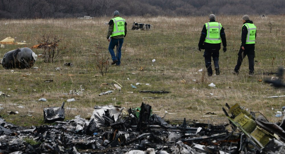 MH17 flight recovery team members examine one of the areas of the Malaysia Airlines Flight 17 plane crash in the village of Hrabove, Donetsk region, eastern Ukraine Tuesday, Nov. 11, 2014