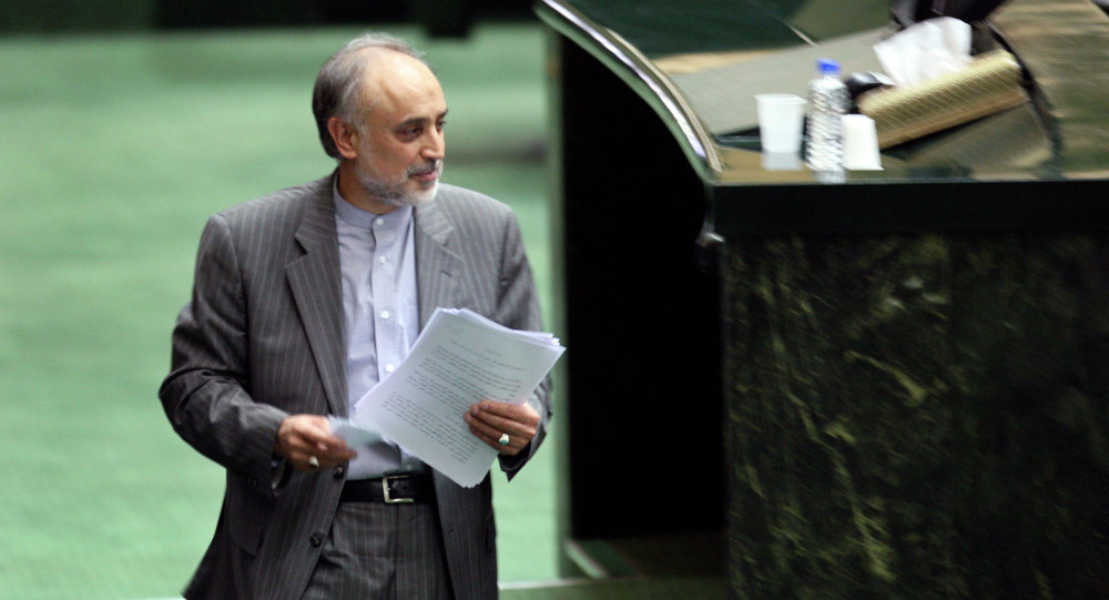 Head of Iran's Atomic Energy Organization, Ali Akbar Salehi