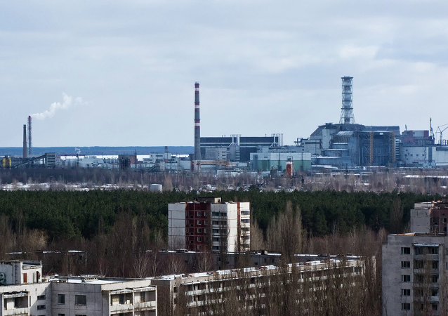The radioactive area near the Chernobyl nuclear power plant will have an unusual present for its upcoming 30th anniversary in April: the Ukrainian government decided to turn Chernobyl into 'biosphere' nature reserve.