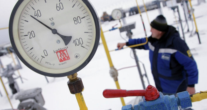Turkey's Energy Ministry and Russia's energy giant Gazprom may hold negotiations next week on the price of Russian gas