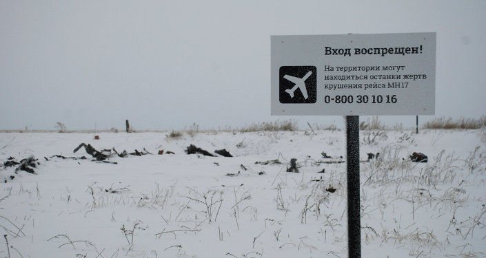 Crash site of the Malaysian Boeing 777 in the village of Grabovo near Shakhtarsk, Donetsk Region