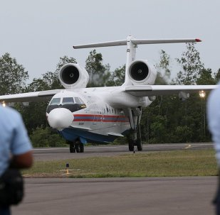 Indonesian Air Force personnel stand on the tarmac as Russia's Beriev Be-200 amphibious aircraft arrives to reinforce a search operation for the victims and the wreckage of AirAsia Flight 8501 at Pangkalan Bun Airport