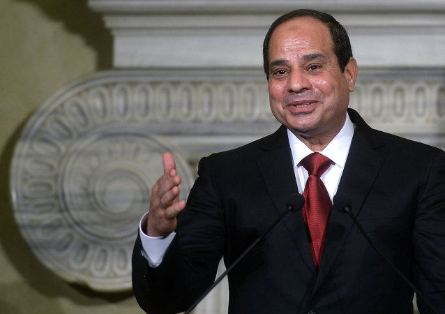 Egyptian President Abdel Fattah al-Sisi speaks during a joint news conference following his meeting with the Italian Prime Minister at Villa Madama in Rome. Archive photo.