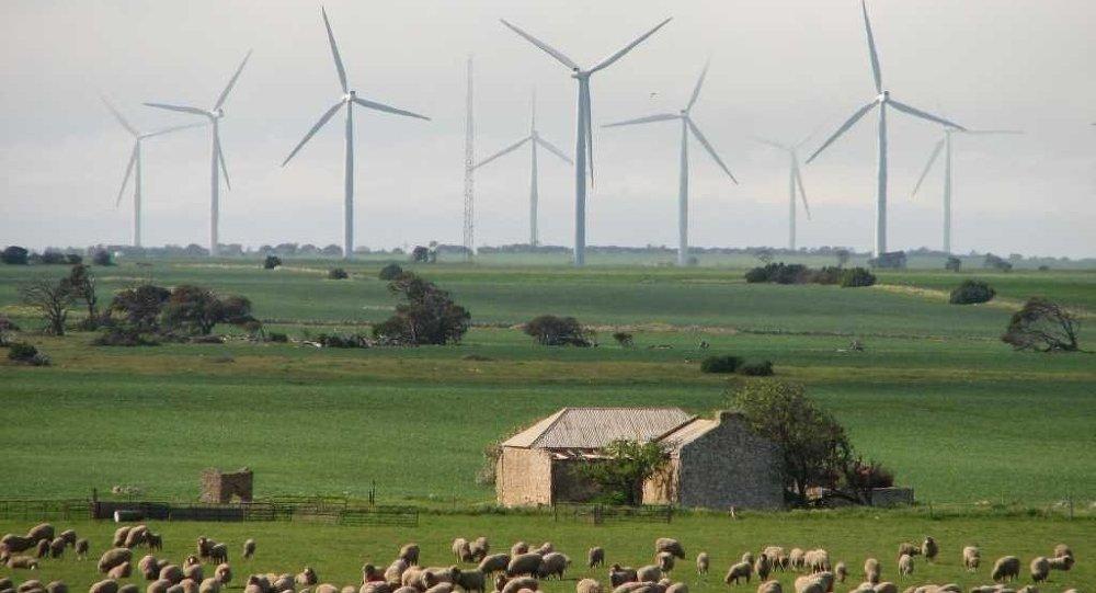 Wattle Point wind farm on Yorke Peninsula