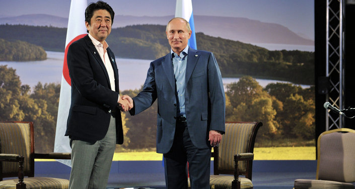 Japanese Prime Minister Shinzo Abe and Russian President Vladimir Putin shake hands before  their meeting during the G8 Summit at Lough Erne in Enniskillen, Northern Ireland, June 17, 2013