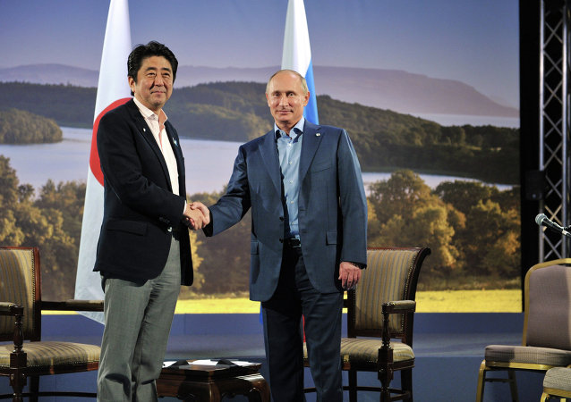 Japanese Prime Minister Shinzo Abe and Russian President Vladimir Putin shake hands before  their meeting during the G8 Summit at Lough Erne in Enniskillen, Northern Ireland, June 17, 2013.