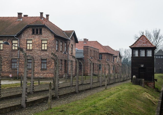 The General Secretary of the International Federation of Resistance Fighters has criticized Poland's decision not to invite the Russian President for the 70th anniversary of the liberation of the Auschwitz concentration camp network.