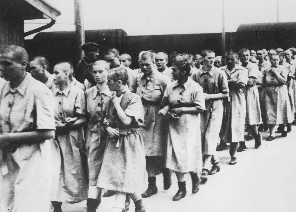 a paper on surviving nazi concentration camps