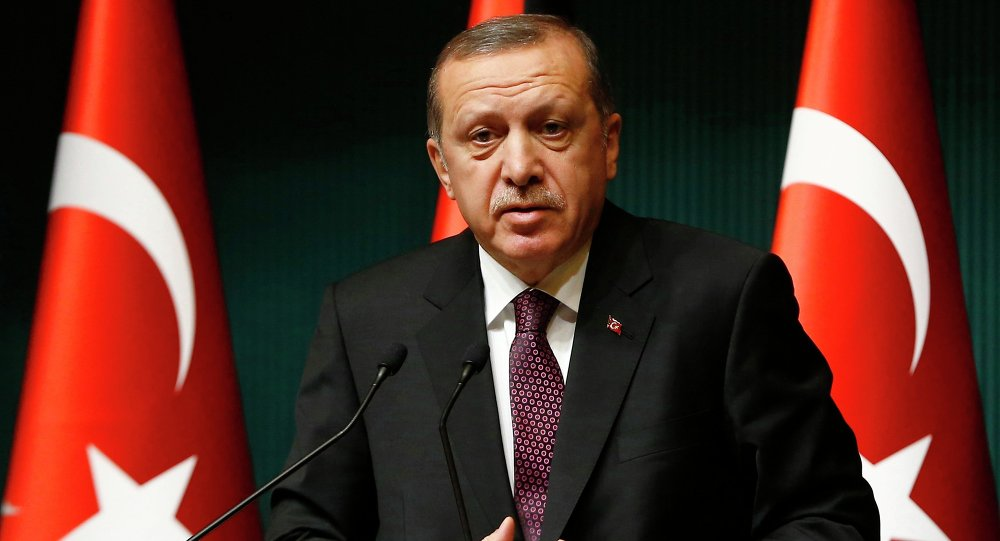 Turkey's President Tayyip Erdogan addresses the media at the Presidential Palace in Ankara