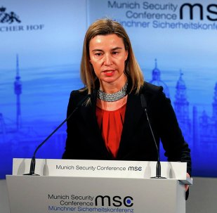 European Union foreign policy chief Federica Mogherini addresses during the 51st Munich Security Conference at the 'Bayerischer Hof' hotel in Munich February 8, 2015