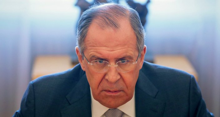 Russian Foreign Minister Sergei Lavrov during a meeting with French Senate President Gerard Larcher in Moscow