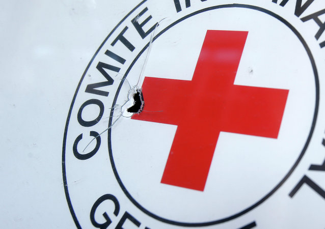 A bullet hole is seen on a sign, on a Red Cross office after shelling, in the town of Donetsk, eastern Ukraine