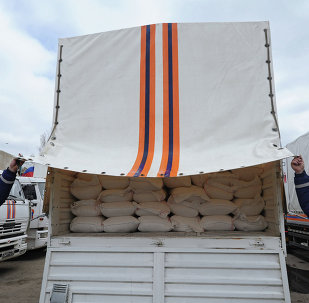 Seventeenth humanitarian convoy for southeastern Ukraine being formed in Rostov Region
