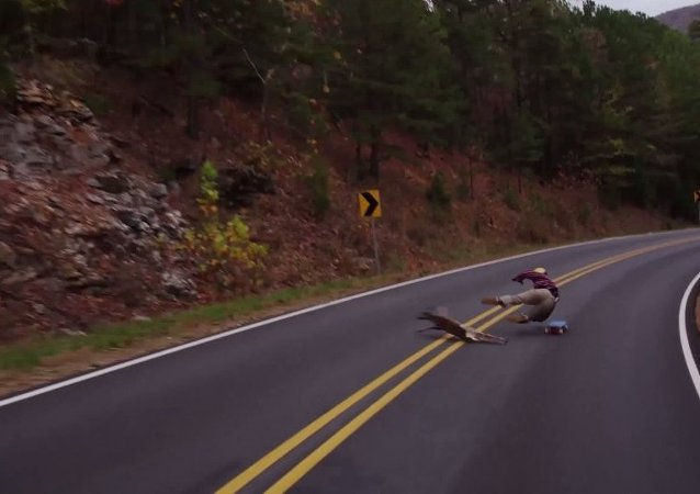 Oh My Deer: Longboarder's Collision With Bamby