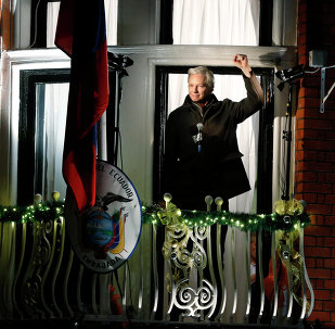 Julian Assange holds a press conference from a balcony at the Ecuadorian embassy in London on Dec. 20 2012 to mark six months since he first took refuge there on June 20 to avoid extradition to Sweden to faces sexual assault charges.