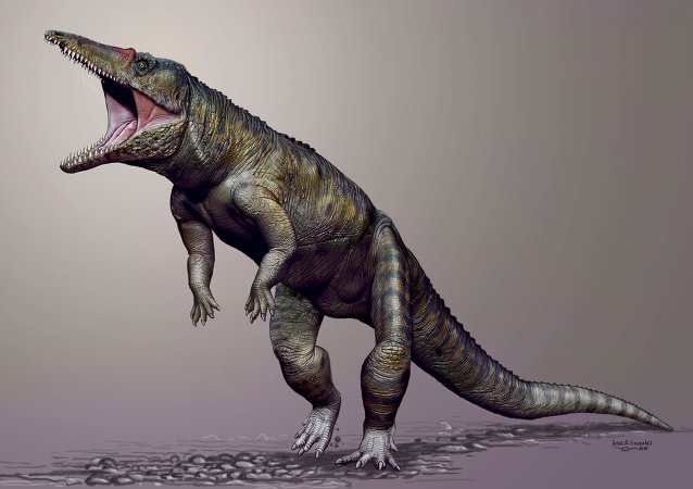 Carnufex carolensis, a newly-discovered crocodilian ancestor that walked on its hind legs, is pictured in this handout life reconstruction obtained by Reuters March 19, 2015