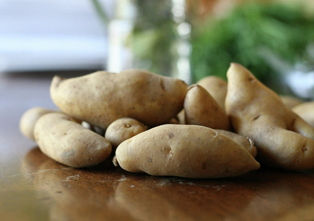 Fingerling potatos