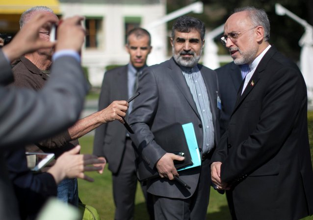 The head of the Atomic Energy Organization of Iran Ali Akbar Salehi speaks to reporters during negotiations between United States Secretary of State John Kerry and Iran's Foreign Minister Javad Zarif over Iran's nuclear program in Lausanne March 17, 2015