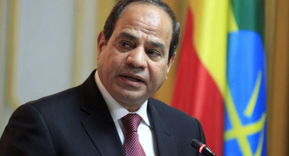 Egypt calls for lifting of arms embargo on Libya