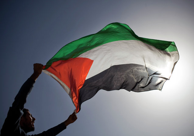 A Palestinian demonstrator waves a Palestinian flag.